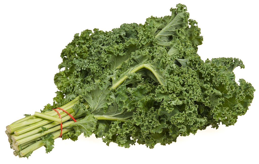 Watch out, it's a bundle of kale! Yummy, yummy kale (Photo by Evan-Amos, via Wikimedia Commons)