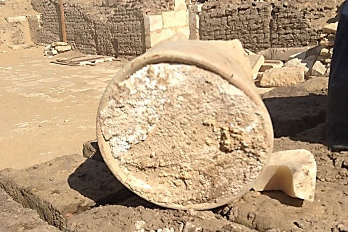 Cheese that's way, way, way, way past its use-by date (Image from University of Catania and Cairo University)