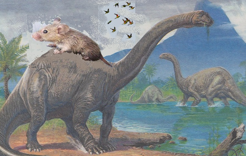 Mouse riding Brontosaurus while parrots watch