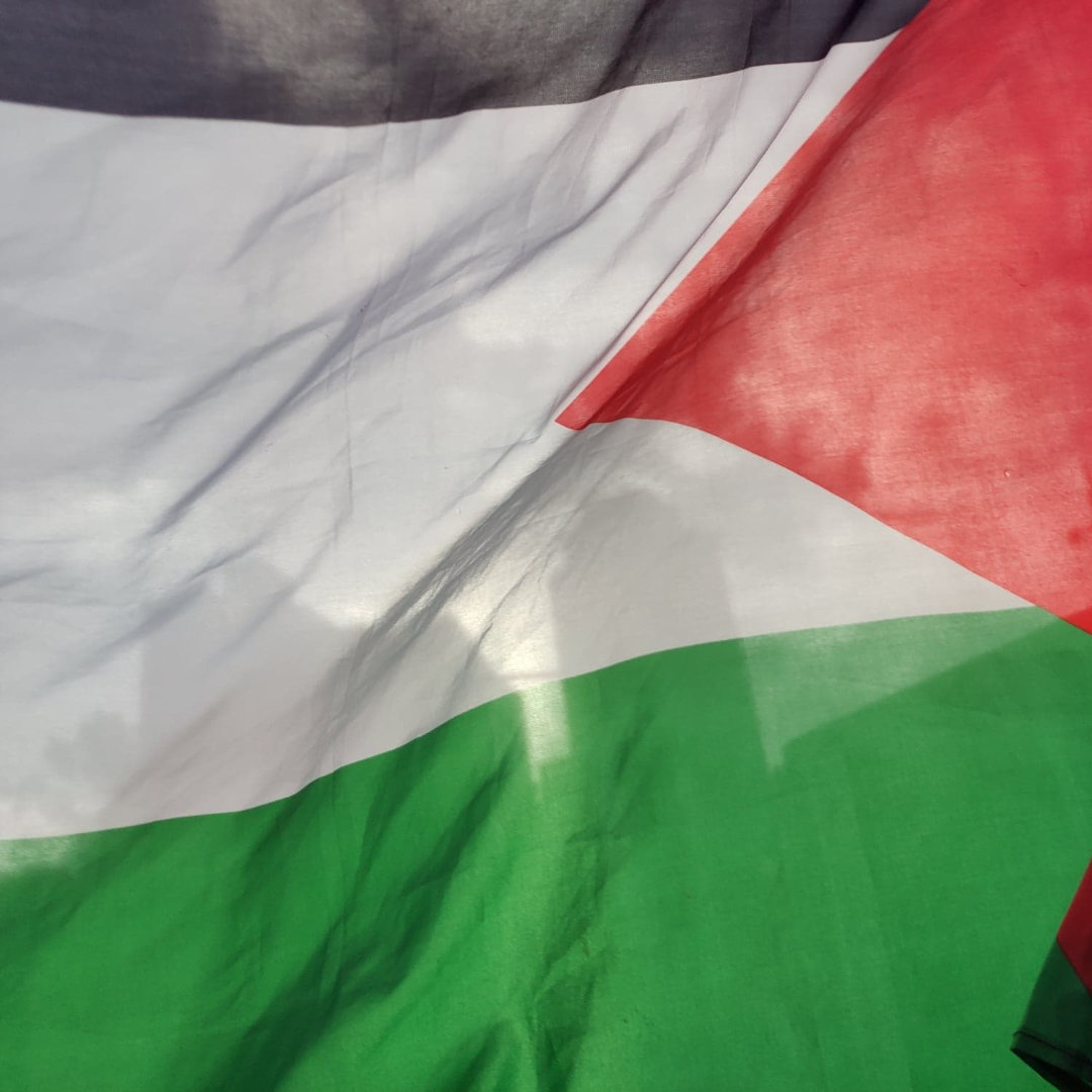 Palestinian flag with city skyline in background