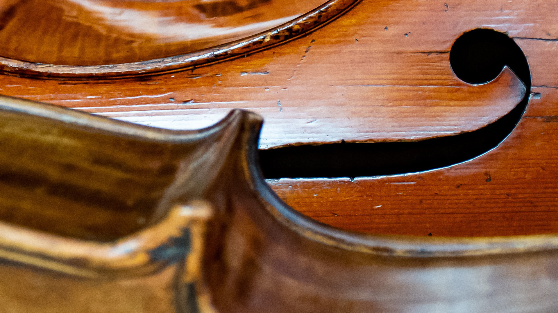 Abstract close up of two celli