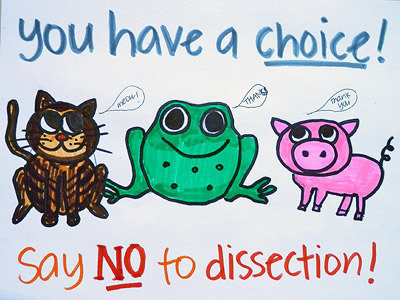 You have a choice! Say NO to dissection!