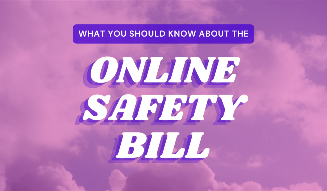 'What you need to know about the Online Safety Bill.' Credit Digital Rights Watch