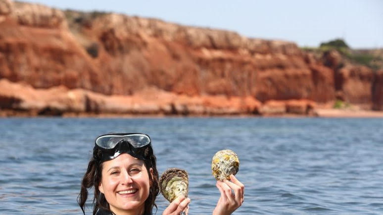Anita Nedosyko in foreground wearing goggles and joyfully holding up oyster shells, with ocean & reef in background (Source: Tait Schmall)