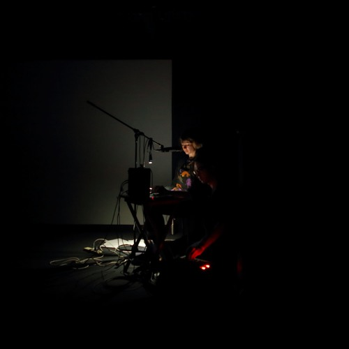 Anja Kanngieser performing 'A Story of Extinction' at Liquid Architecture festival.