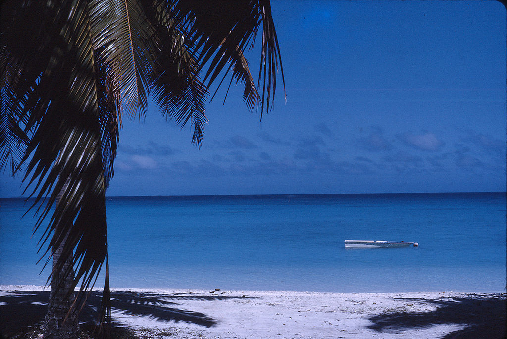 Mururoa - Image of a beach with palm tree on left and boat on water in background