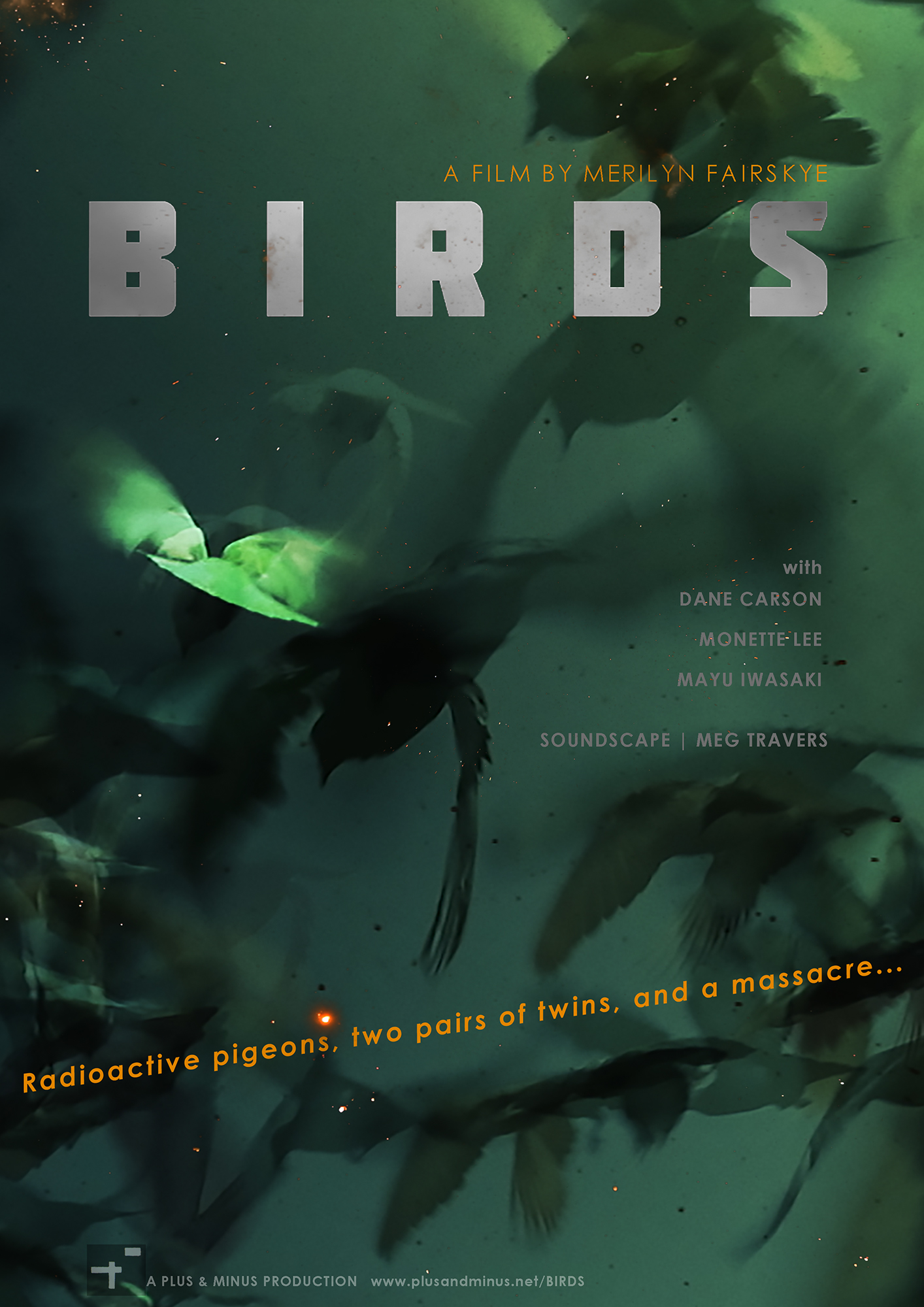 """Poster for """"BIRDS"""" film by Merilyn Fairskye with image of distorted pigeons on blue background"""