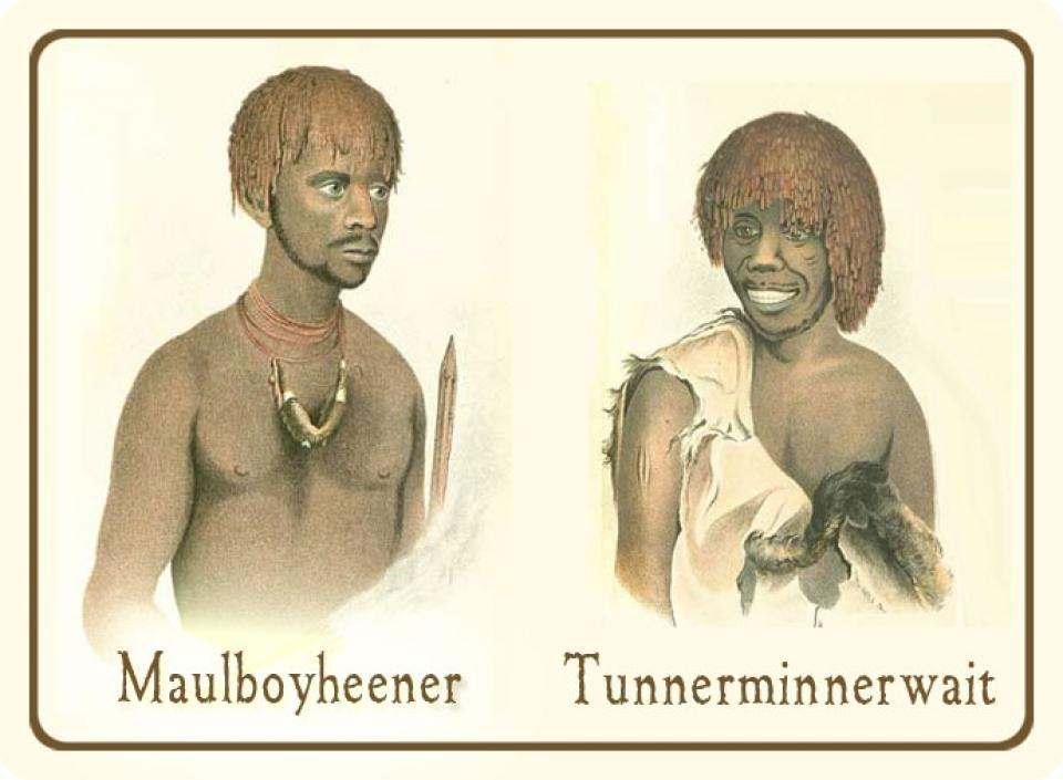 Tunnerminnerwait and Maulboyheenner 2017