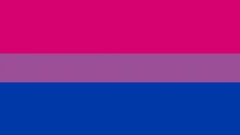 bi flag pink purple and blue stripes