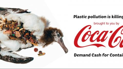Coca cola's pollution & Tribute for forests Activists