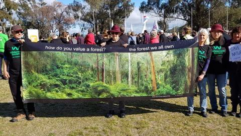 Friends of the Forest with Corunna Forest Protection Group and Canberra Forest Alliance at Stand Against  Extinction rally, Parliament House  Canberra.