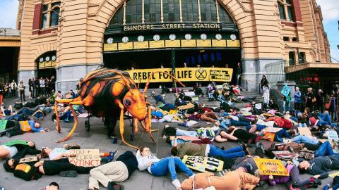 A hundred people play dead on the steps of Flinders St Station...with giant bug.