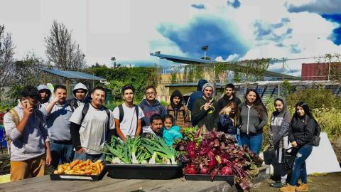 A group of more than 15 Richmond High School students and community members standing outside in the onsite garden, in the foreground is a wooden table laden with freshly harvested piles of juicy carrots, leeks and beetroot. In the background fertile fruit and vegetable crops are visible with other greenery and infrastructure, under a blue sky with the promise of rain clouds.