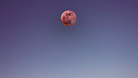 Jan Kohl blood moon