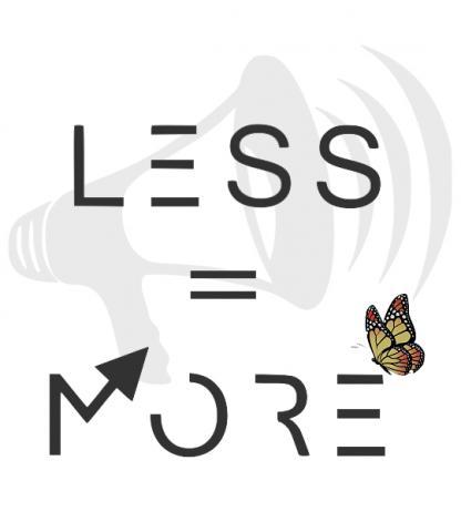 Less Is More: MMT meets ecological economics