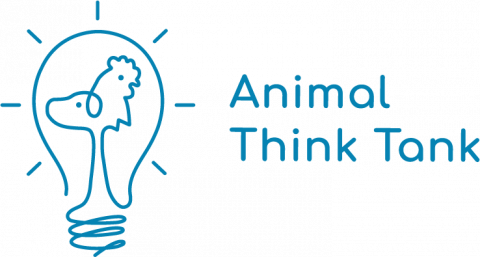 Animal Think Tank