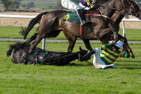Falling racehorse