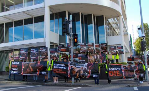 Image of participants in the BEEF.ORG.AU campaign holding posters and banners in Queensland in May 2021.