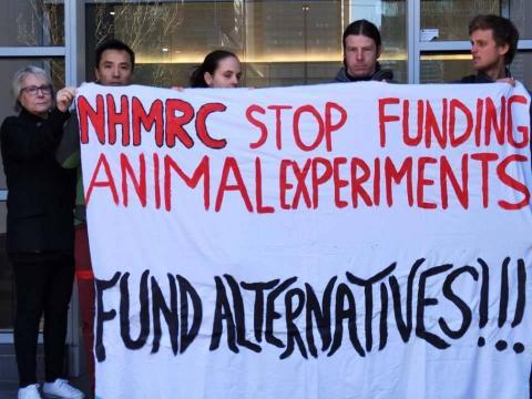 Stop Animal Experimentation