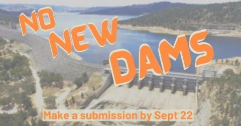 No New Dams