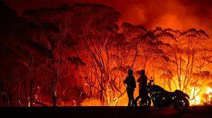 The 2020 bushfire season is staggering.